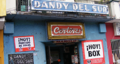 dandy-del-sur-dia